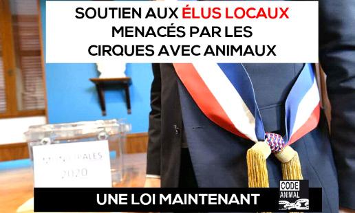 Soutien aux maires et élus locaux menacés par les cirques avec animaux
