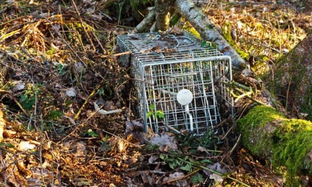 Stop à la chasse près des habitations