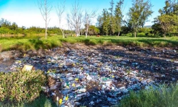 Pétition : Arrêtons le plastique à l'île de la Réunion !