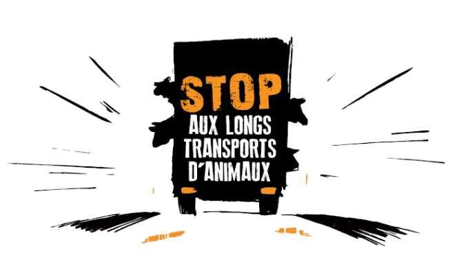 STOP AUX SOUFFRANCES INACCEPTABLES SUBIES PAR LES ANIMAUX DURANT LES TRANSPORTS