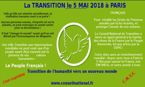 """Résultat de recherche d'images pour """"conseil national de transition 5 mai 2018"""""""