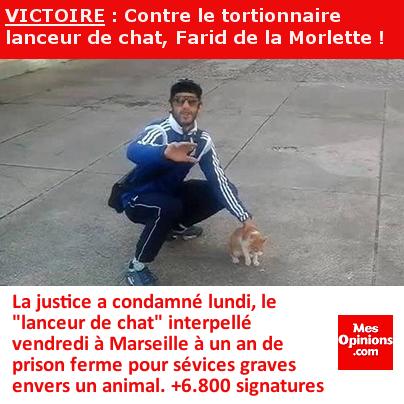 VICTOIRE : Contre le tortionnaire de chat, Farid de la Morlette